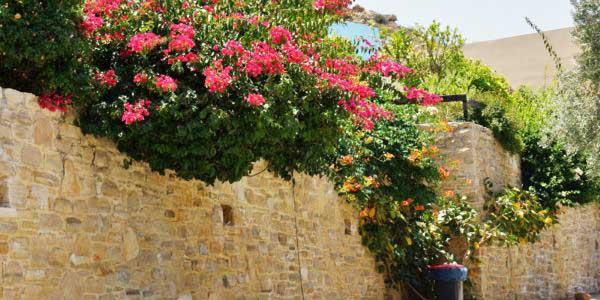 Ferien-Kreta (1)
